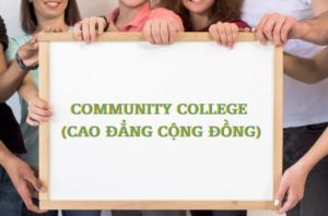 Để du học Mỹ sau phổ thông, du học sinh có hai lựa chọn chính để theo học là Community College (tạm dịch là Cao đẳng Cộng đồng) và University (đại học). Vì vậy, bạn sẽ có nhiều cơ hội hơn đế tiến gần với ước mơ du học Mỹ của mình. Tuy nhiên, bạn hiểu gì về Community College? Lợi ích và điều kiện khi chọn trường cao đẳng này là gì? Tất cả sẽ được Global Me chia sẻ dưới đây.